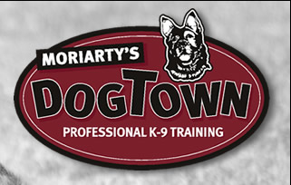 Moriarty's Dog Town Professional K-9 Training